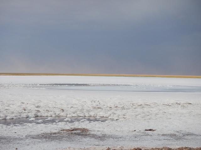 lagunas de sal desierto atacama