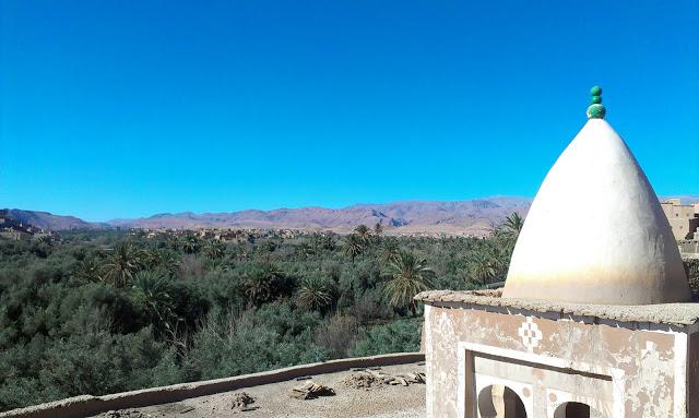 Vistas palmeral valle todra
